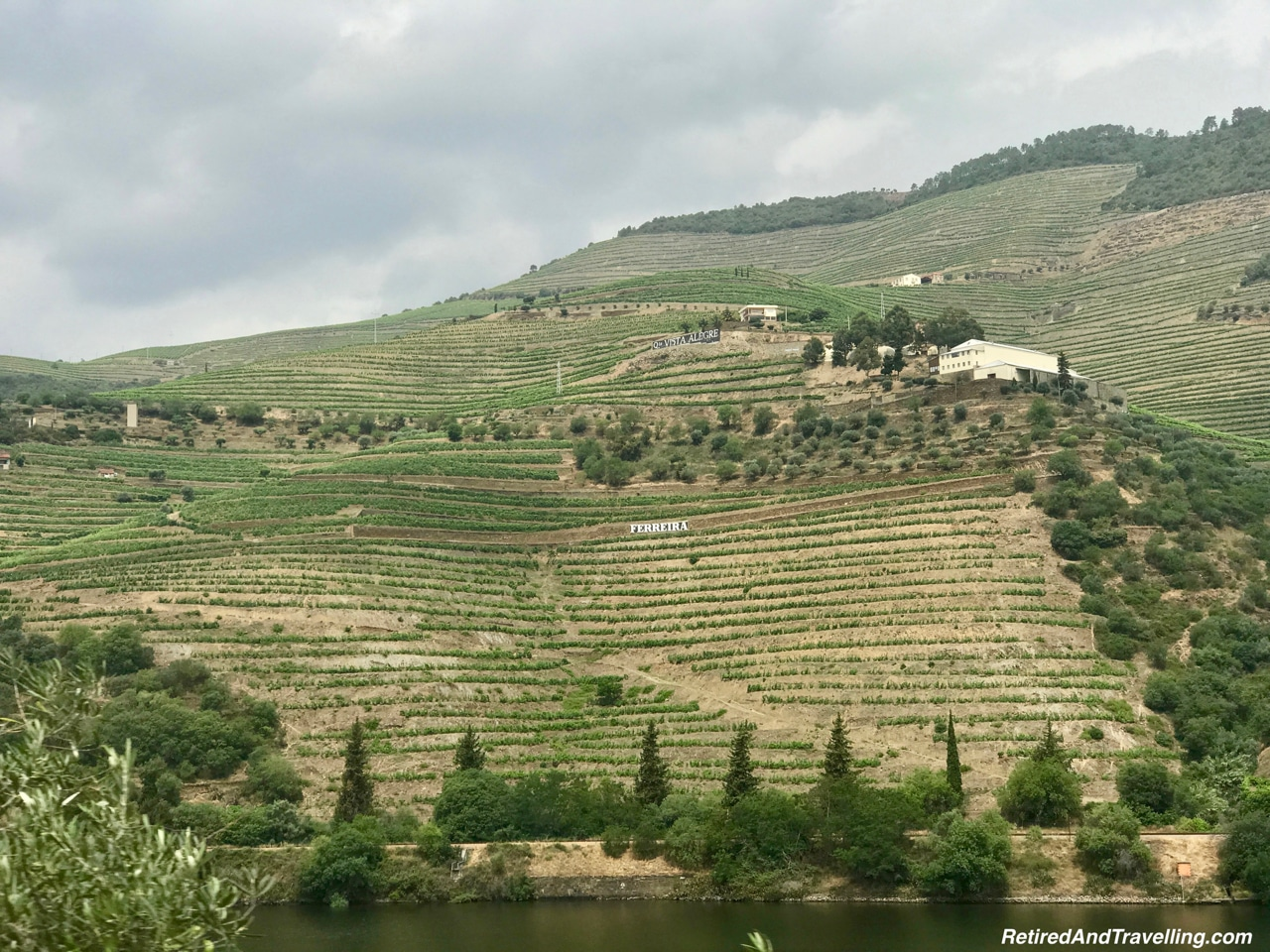 Wineries On N108 Route - Driving Along the Douro River Valley.jpg