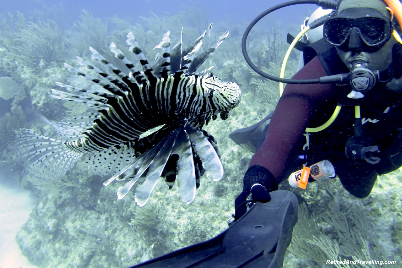 Scuba Dive Exuma Sandals Emerald Bay Lion Fish - Water Fun in Bahamas.jpg