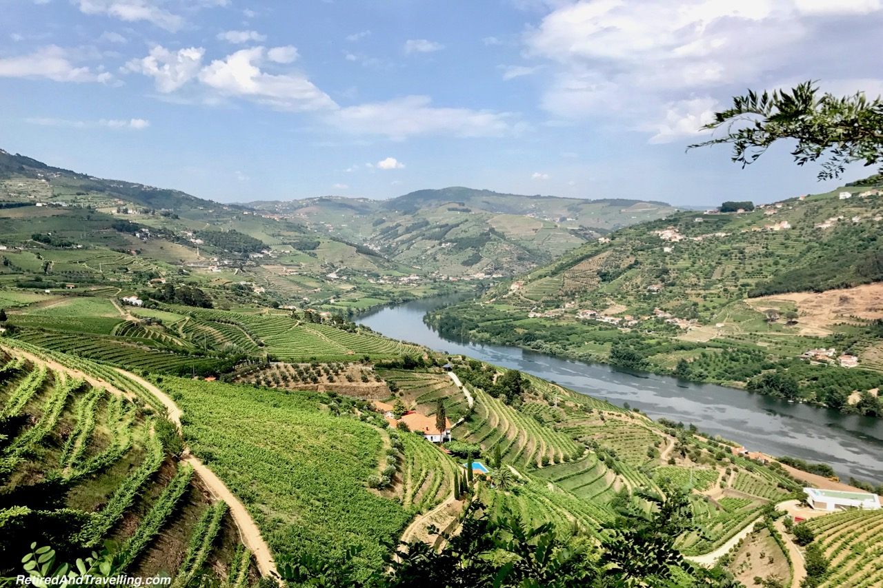 Wine Terraces On N108 Route - Driving Along the Douro River Valley.jpg