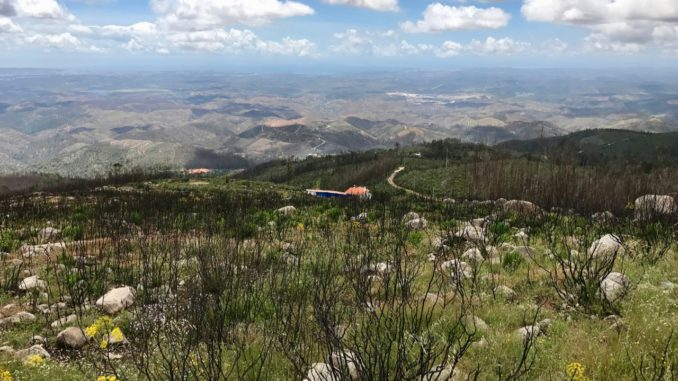 High in The Algarve Mountains at Monchique.jpg