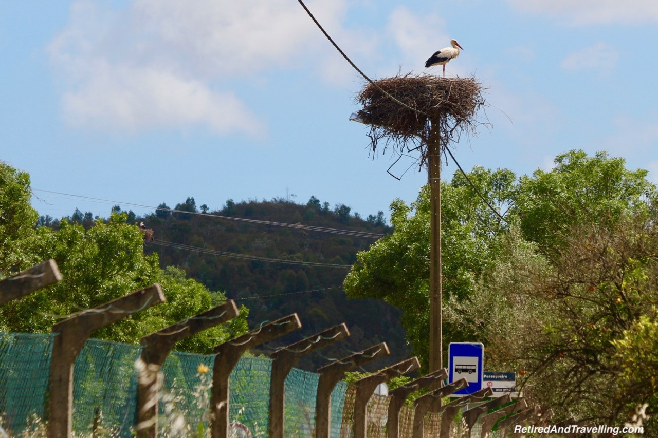 Birds On Poles - Algarve Mountains at Monchique.jpg