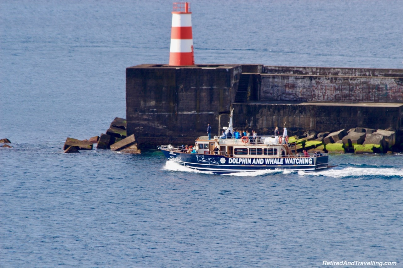 Whale Watching From Sao Miguel.jpg