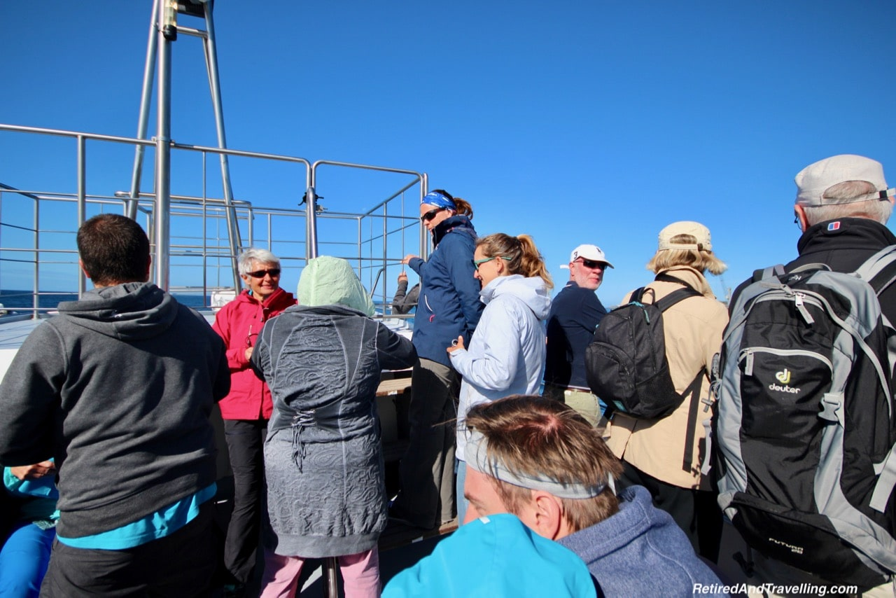 Futurismo Whale Boat Crowd - Whale Watching From Sao Miguel.jpg