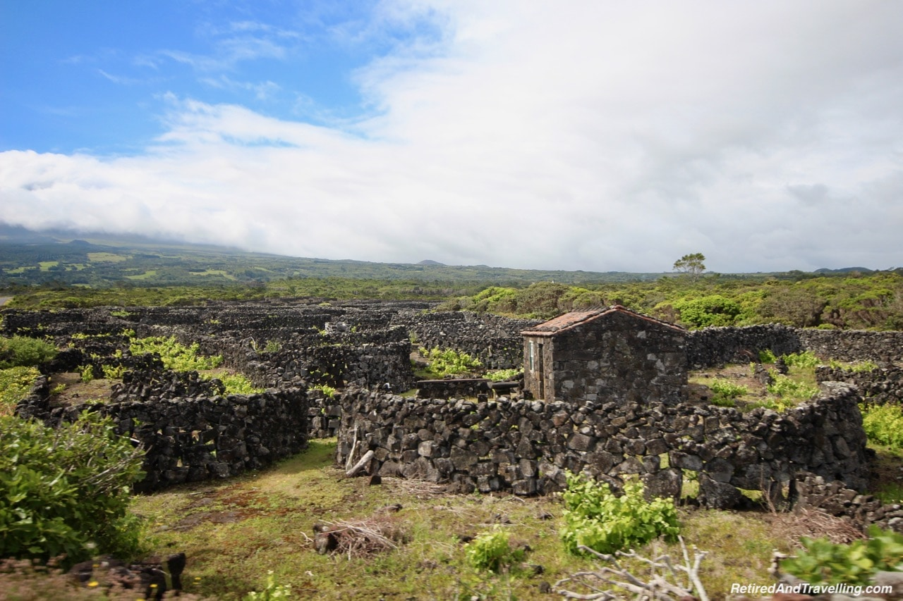 Azores Pico Island Traditional Stone Wall Vineyards - Stay on Faial Island Azores.jpg