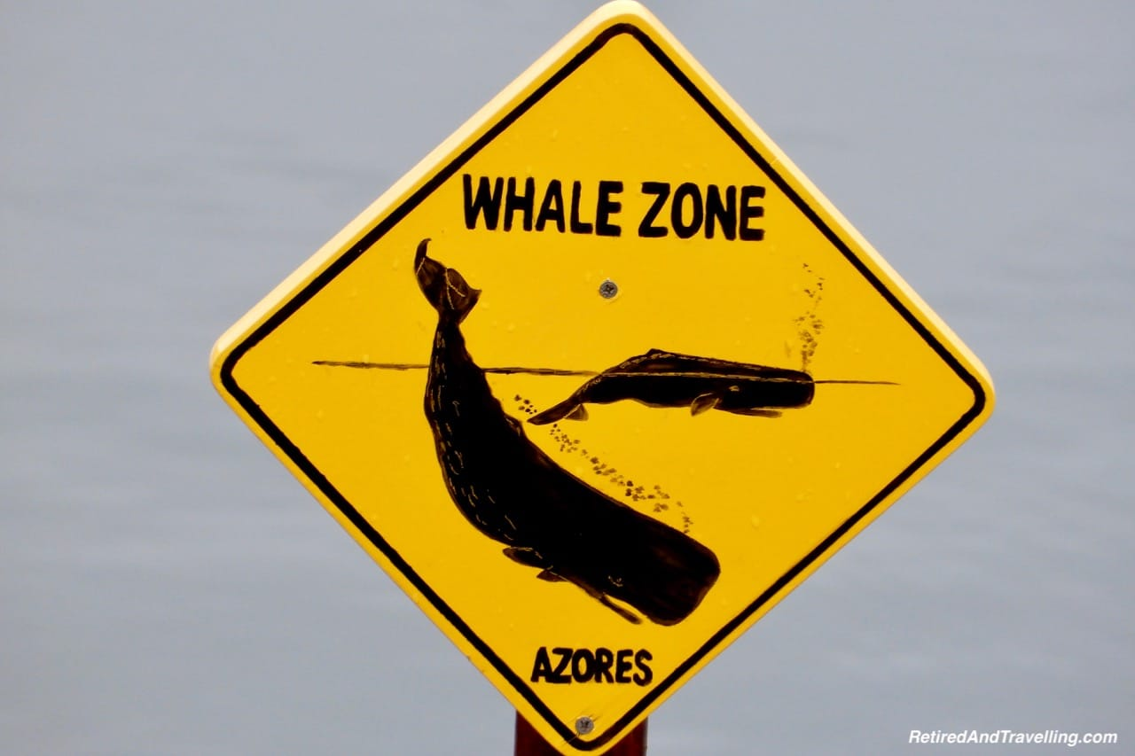 Azores Whaling and Whale Watching - 10 Days In the Azores.jpg