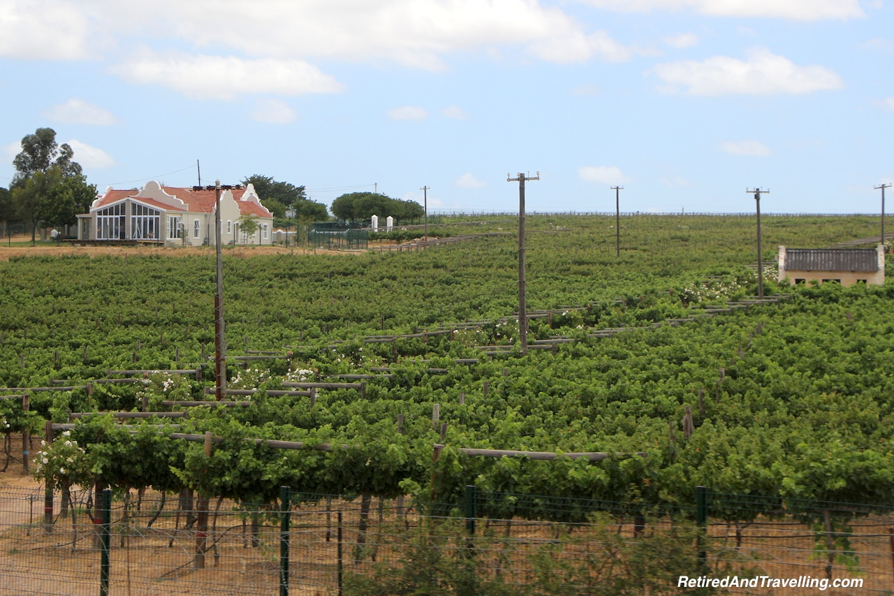 World Class Wine in Stellenbosch - Reasons To Visit Cape Town.jpg