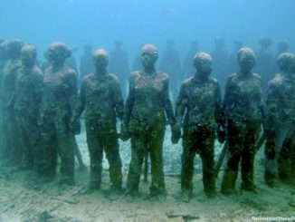 Vicissitudes Underwater Sculptures With Grenada Seafaris - Explore The Underwater Sculptures in Grenada.jpg