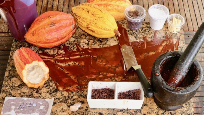 Make Chocolate In St. Lucia.jpg