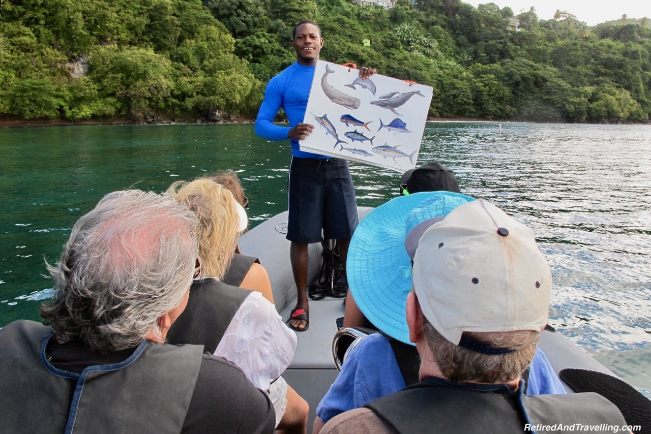 Education With Grenada Seafaris - Explore The Underwater Sculptures in Grenada.jpg