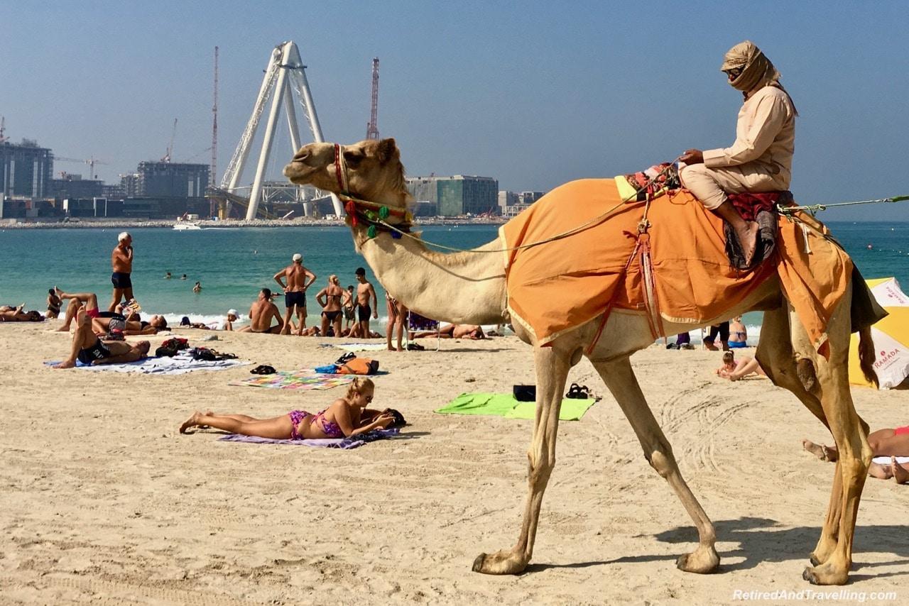 Camel Rides JBR Beach - Things To Do In Dubai.jpg