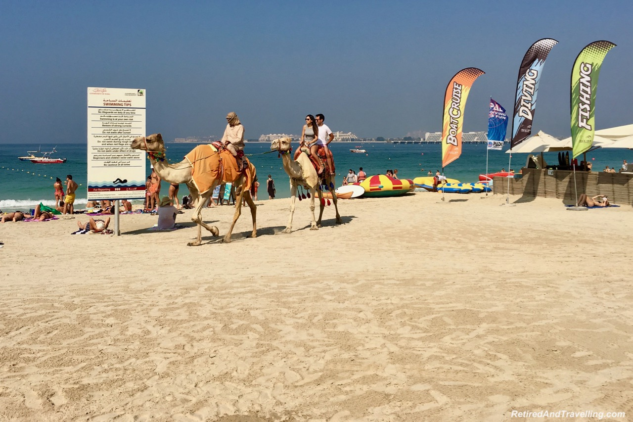 Beach Camels Dubai Marina - Dubai For New Years.jpg