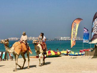 Things To Do In Dubai.jpg