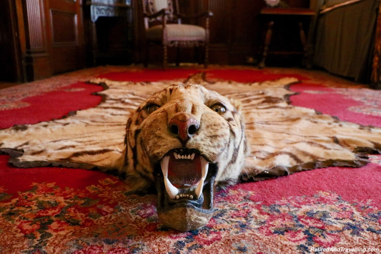 Tigers Head in Bedrooms at Casa Loma - Afternoon Tea At A Castle In Toronto.jpg