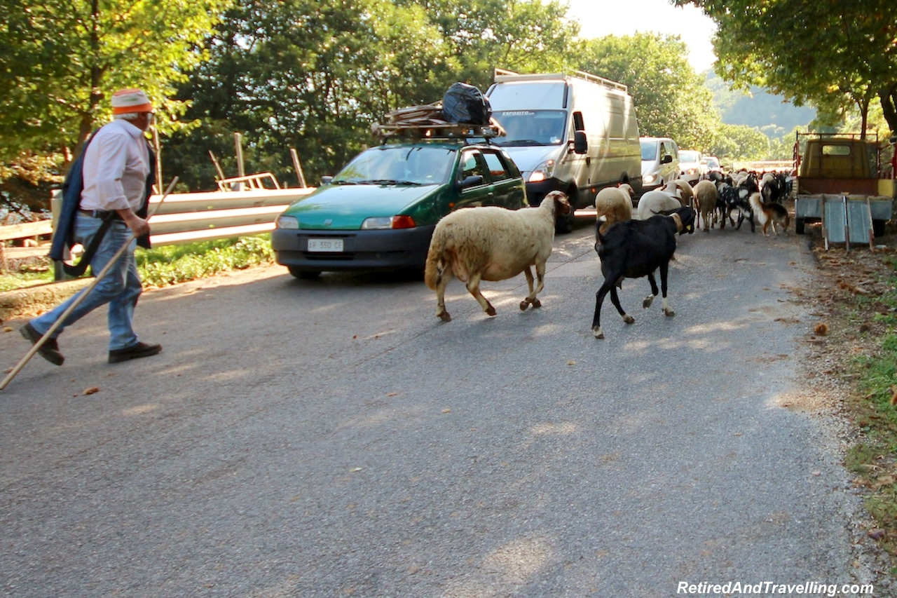Ravello Drive Goats - Travel On The Amalfi Coast.jpg
