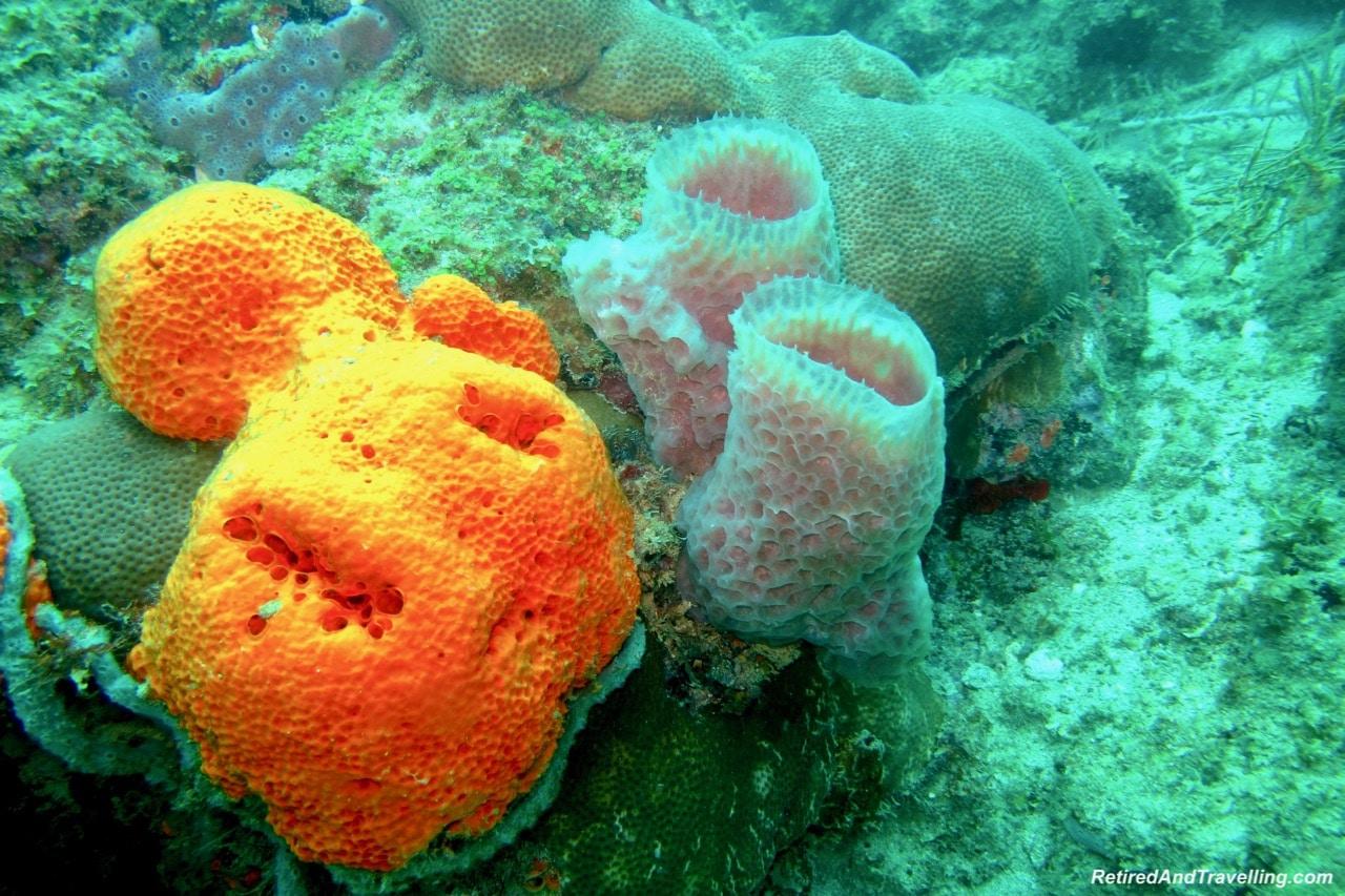 Sandals Regency La Toc Scuba Diving - A Week In St. Lucia.jpg
