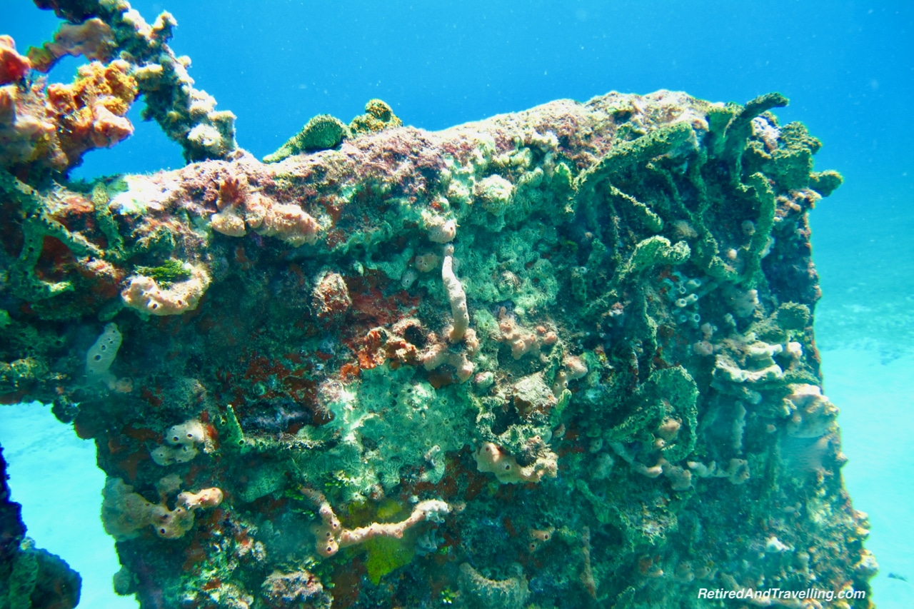 Coral Growth on Wreck - Scuba Diving in Grenada.jpg