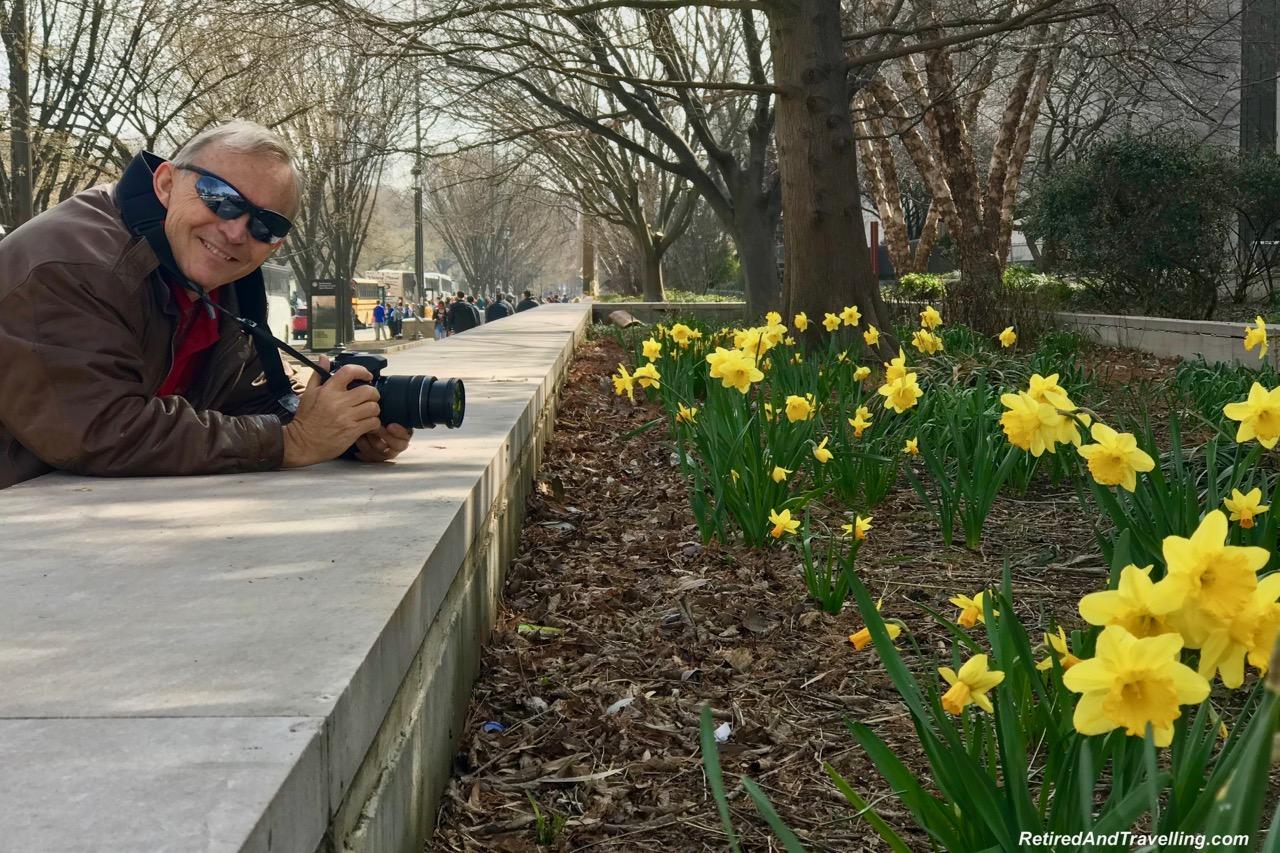 Washington Spring Blossoms - Things To Do In Washington DC.jpg