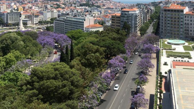 Reasons To Visit Portugal.jpg