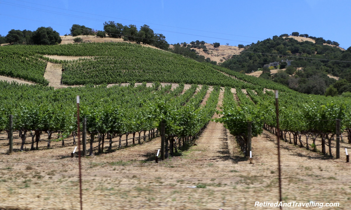 Napa Wine Fields - West Coast Itinerary.jpg