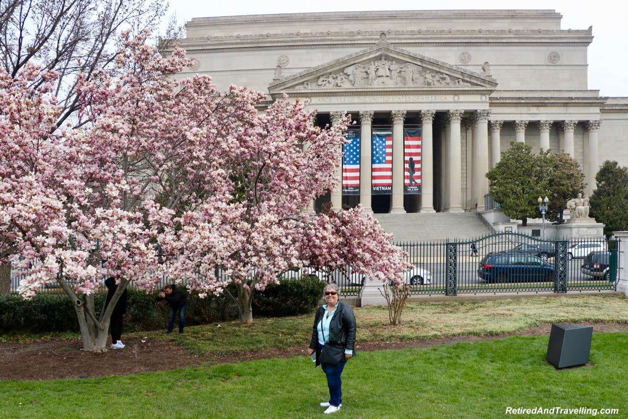 Blossom Views - Experience Cherry Blossoms In Washington DC.jpg