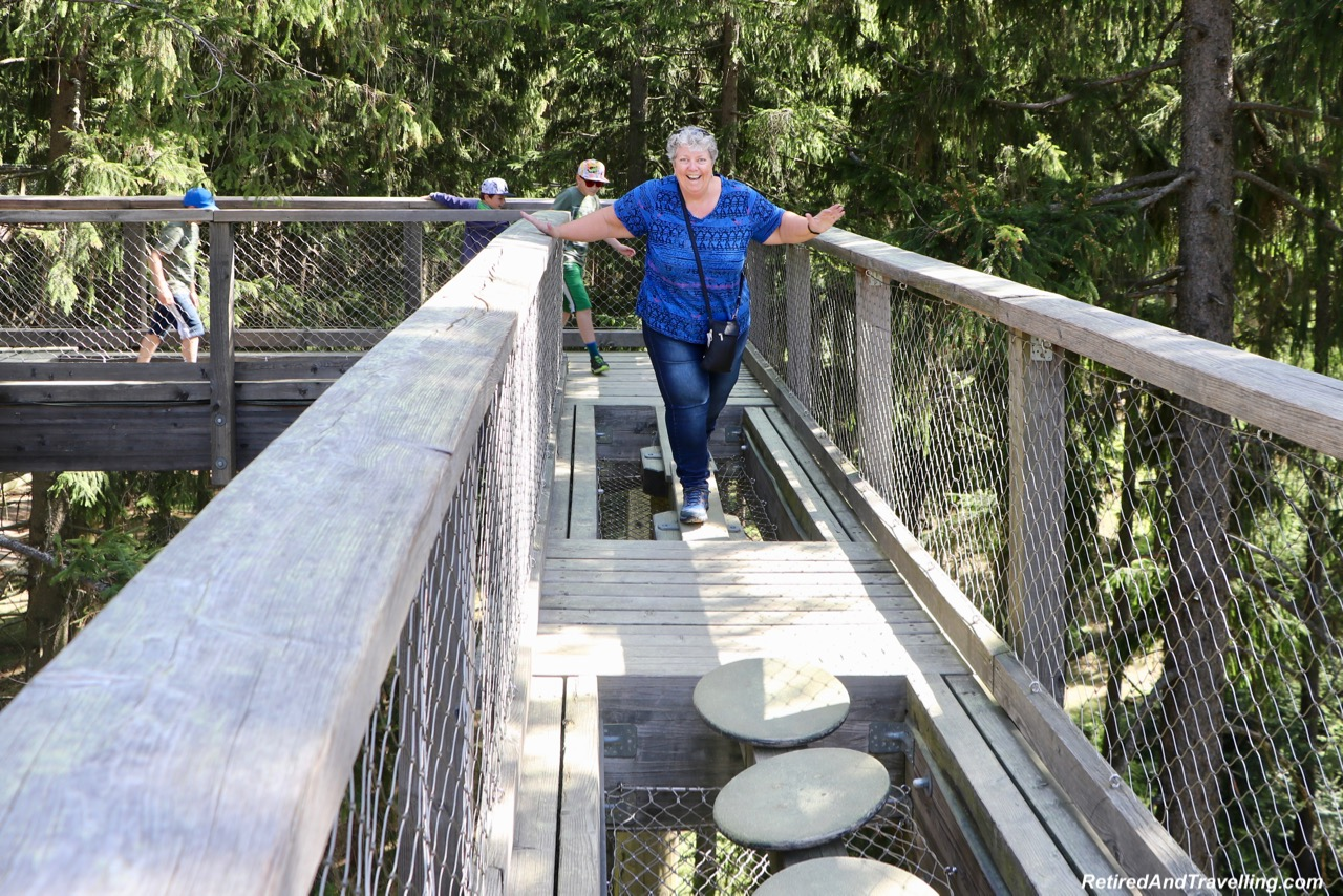Lipno Treetop Walk Family Fun - Czech Countryside From The Lipno Treetop Walk.jpg