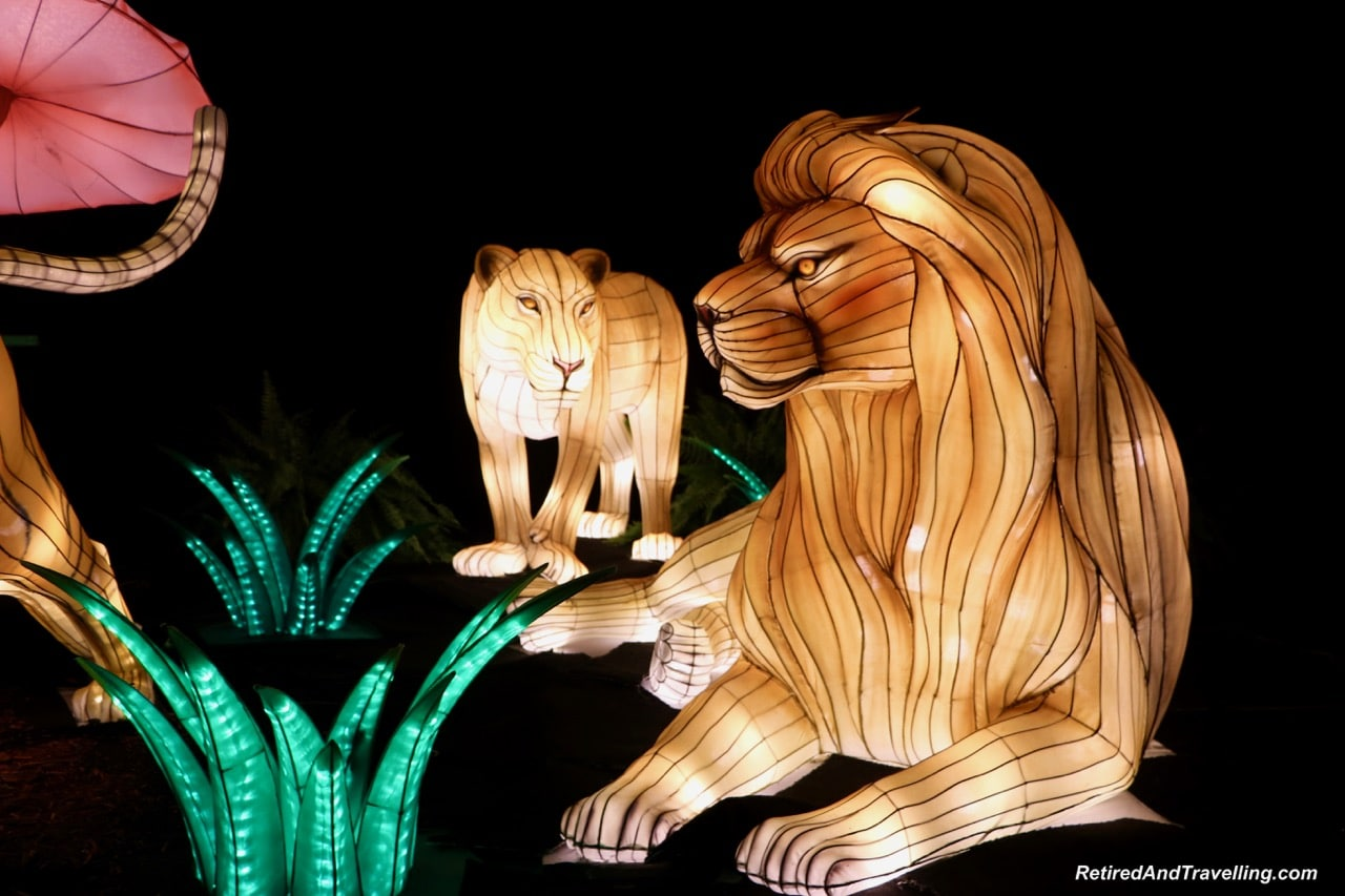 Lions African Animals - Chinese Lanterns At The Toronto CNE.jpg