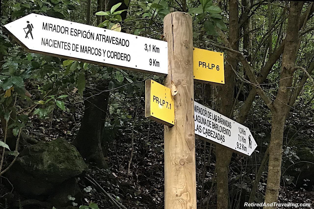 La Palma Los Tilos - Visit the Canary Islands.jpg