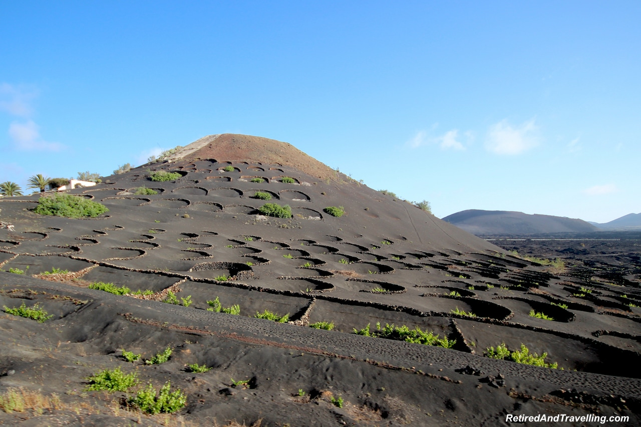 Wine Fields Lanzarote - Visit the Canary Islands.jpg