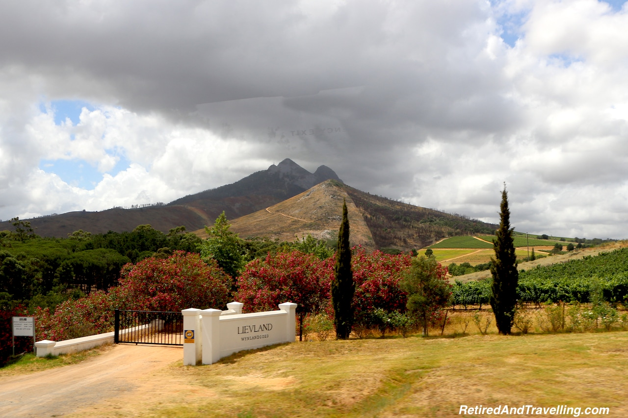 Stellenbosch Wine South Africa - Travel For Food.jpg
