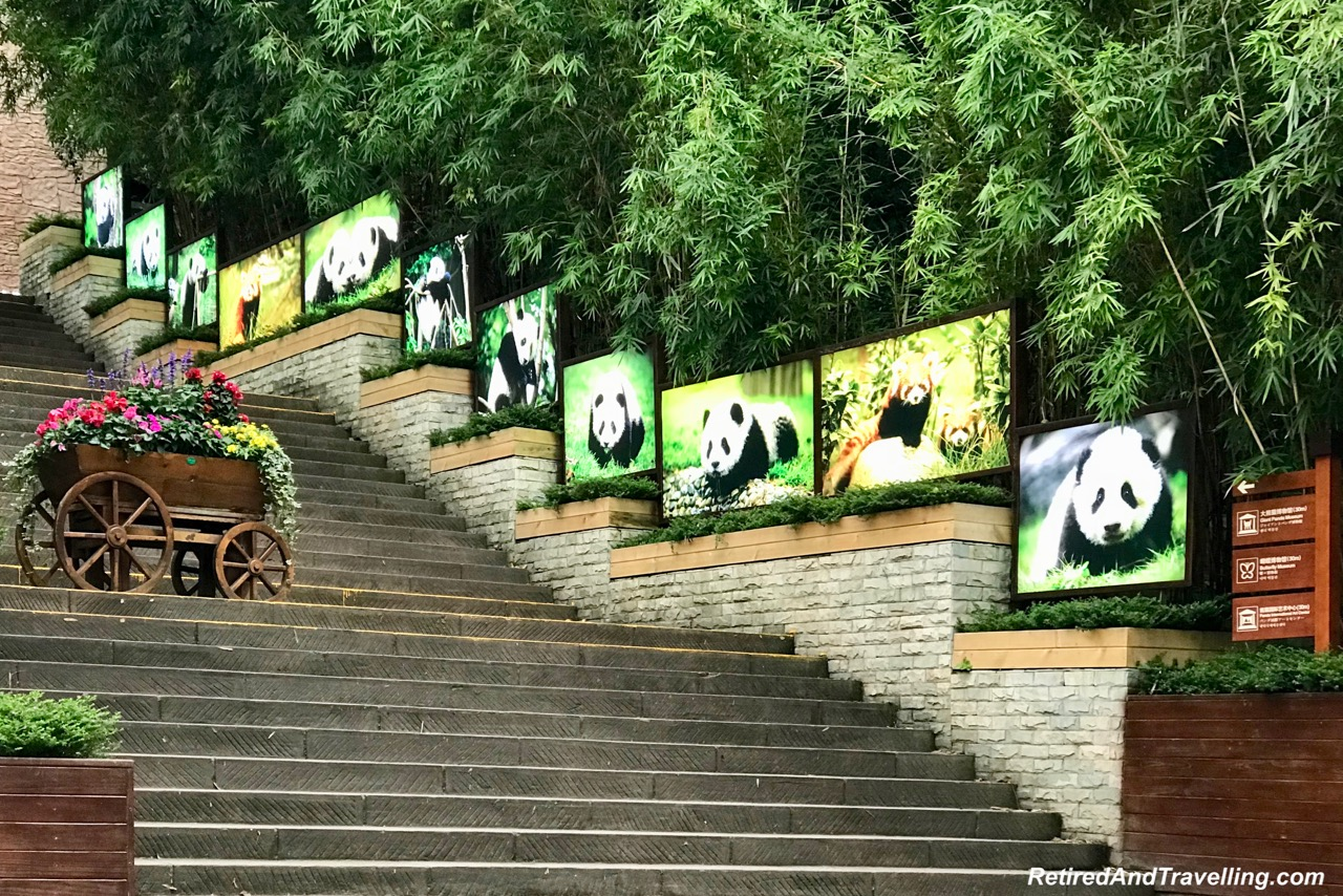 Chengdu Research Base Of Giant Panda Breeding.jpg