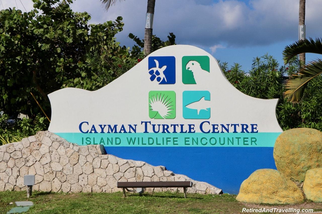 Turtle Centre.jpg