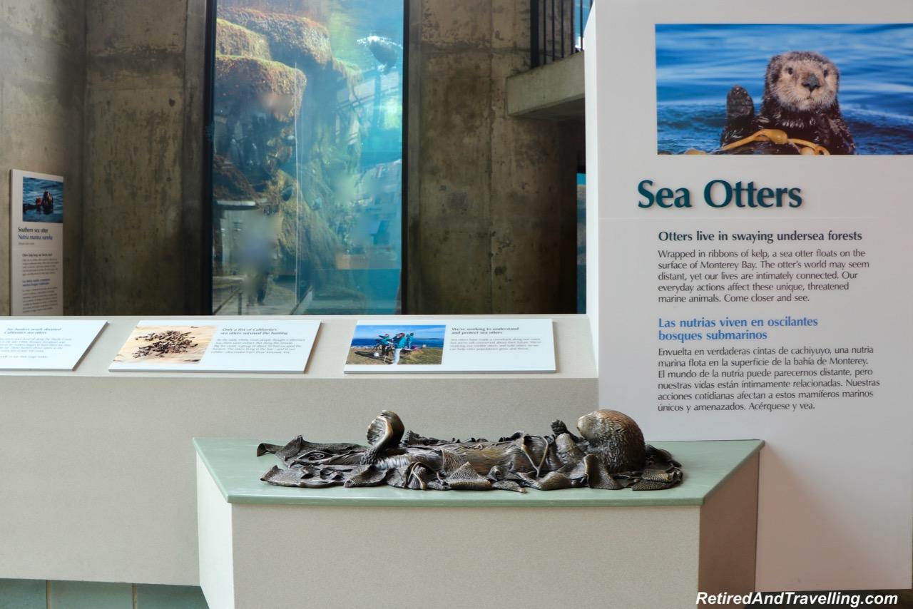 Monterey Bay Aquarium Sea Otters - Under the Sea Views Of Monterey.jpg