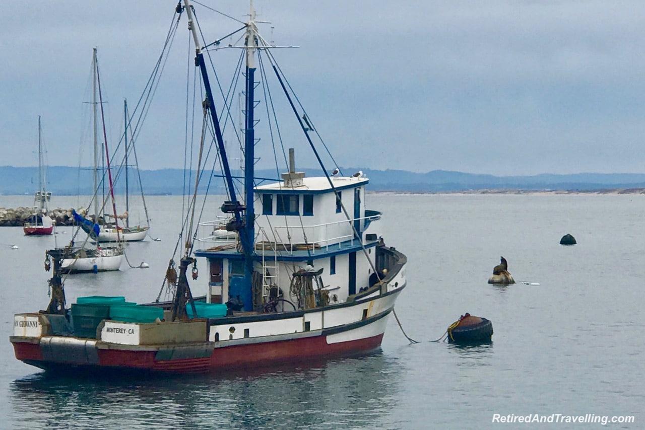 Monterey Fishermans Wharf Sea Lions.jpg
