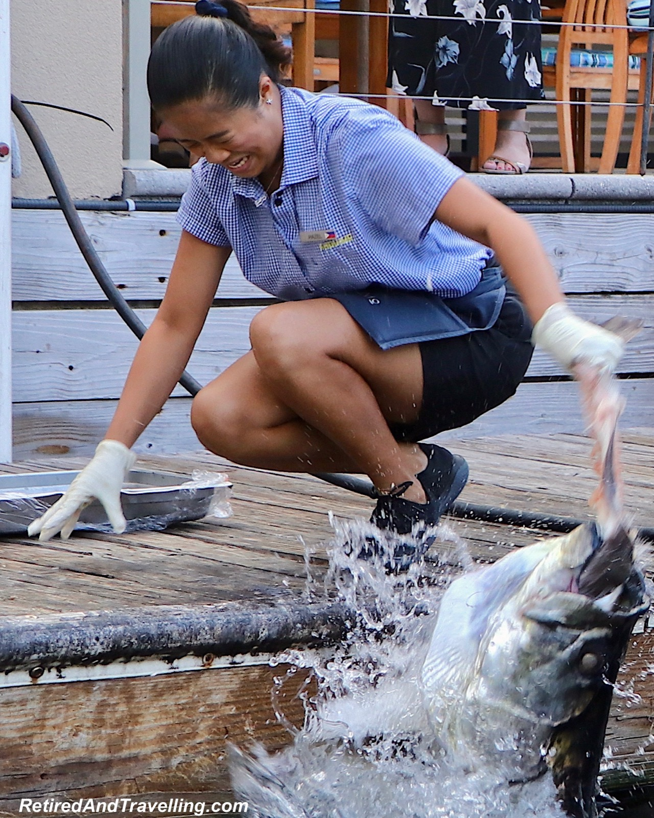 Tarpon Feeding - Stay At Ritz-Carlton Grand Cayman.jpg