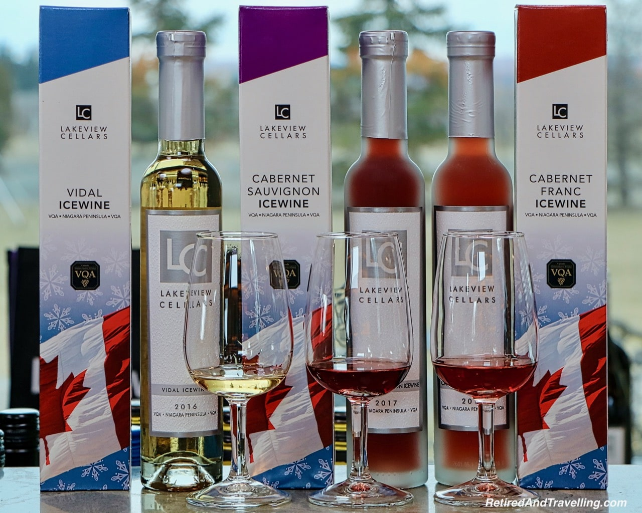 Lakeview Cellars Winery - Icewine Tasting in Niagara.jpg