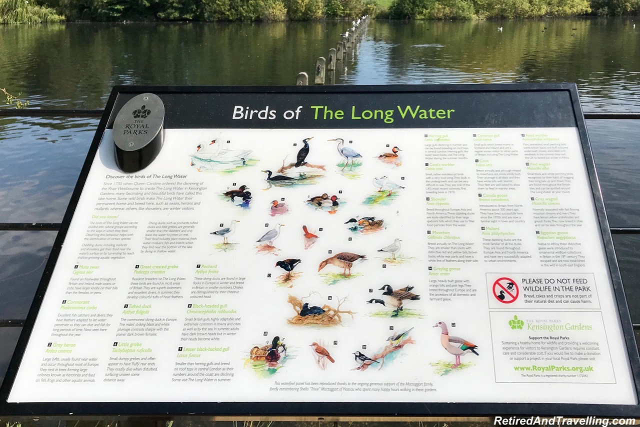 Lake and Birds - Hyde Park.jpg